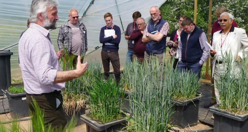 NFU looks at drought-resistant crops