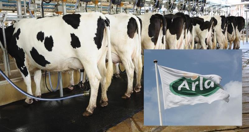 Arla Foods strong branded growth in 2016