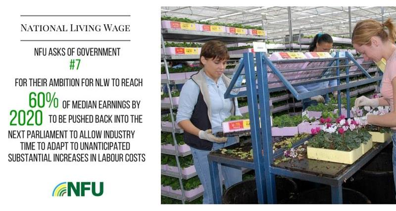 National Living Wage Asks 2, February 2016 Westminster event, horticulture_32796
