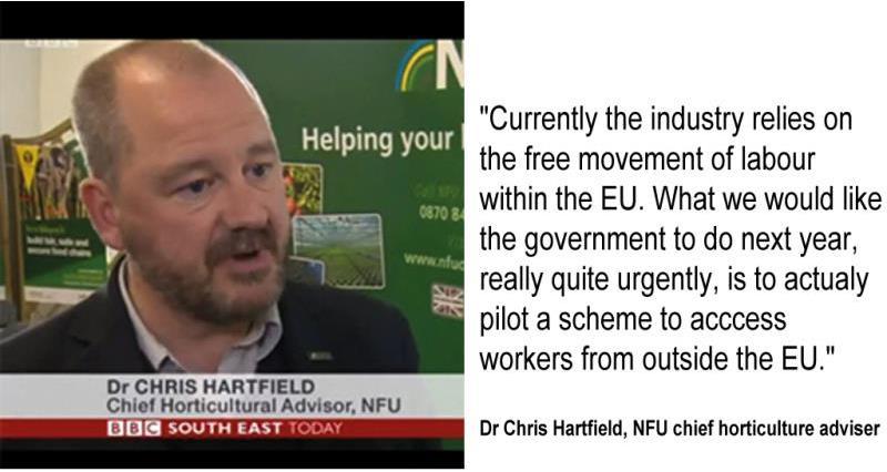 chris hartfield labour permit sceme quote and head shot, bbc coverage_39852