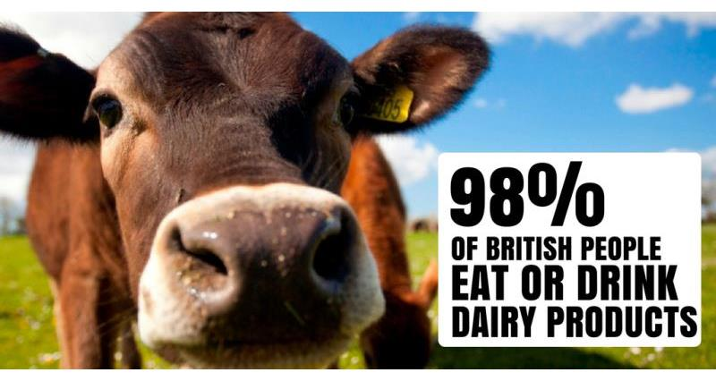 Fascinating facts about British dairy
