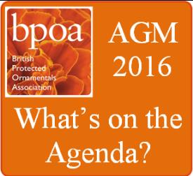 bpoa agm what's on the agenda_31985