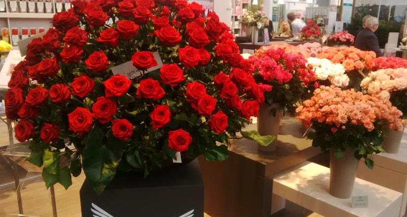 IPM Essen 2016 rose bouquet_32608