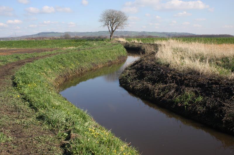 Blackbrook watercourse in Burscough_22899