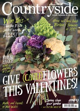Countryside cover Feb 2017_40232