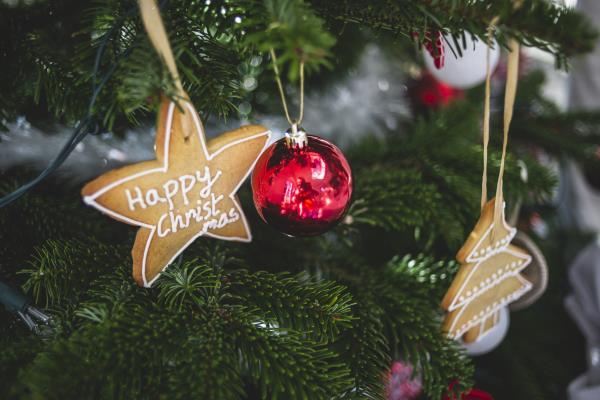 Christmas tree_58676
