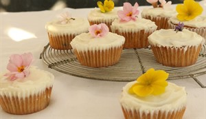 Spiced carrot and honey cakes_78514