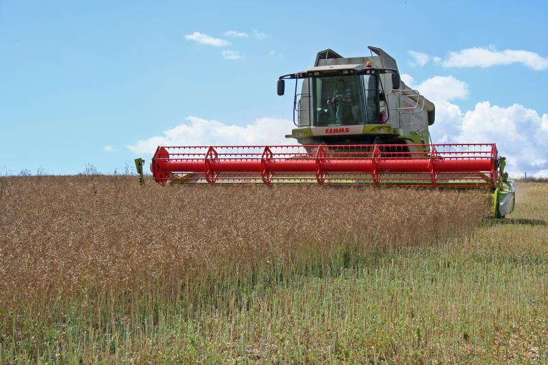 Harvesting oilseed rape near Lewes, East Sussex_29454