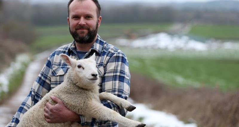 Matt Legge new lamb_52852