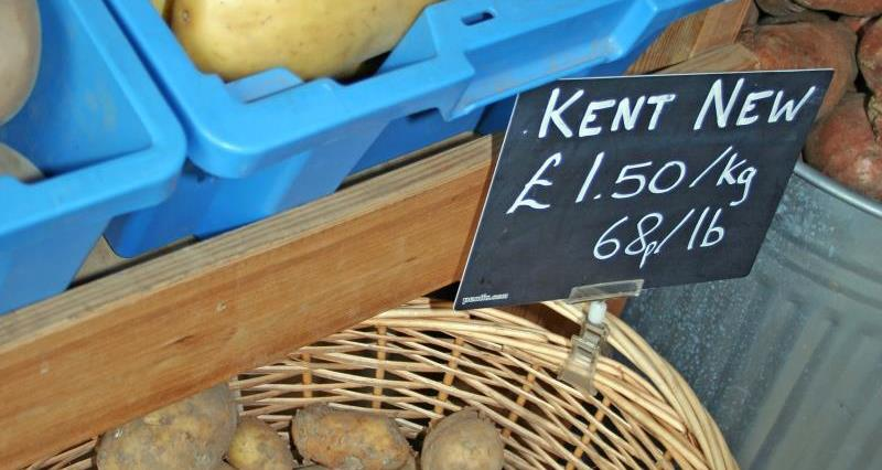 New potatoes, Kent_24420
