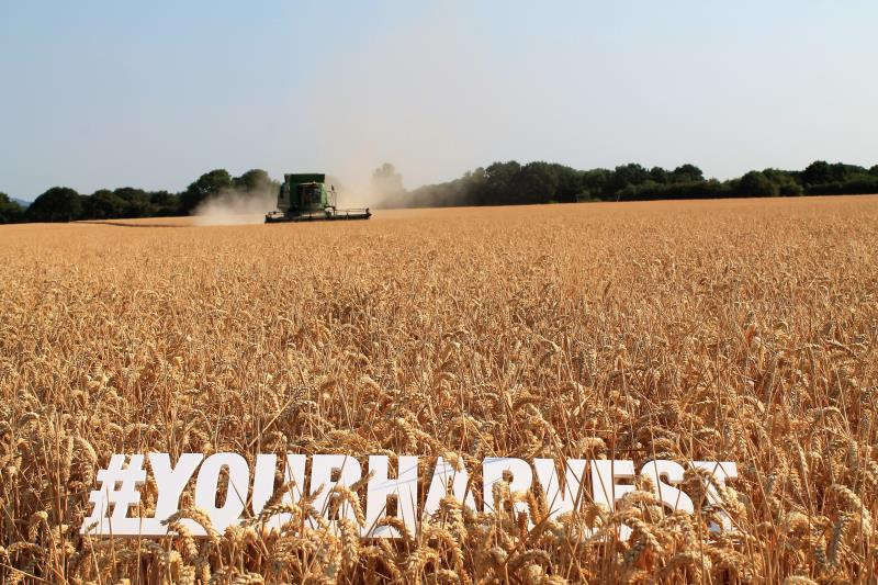 #YourHarvest Sussex_56476