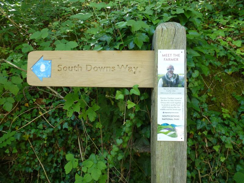 South Downs MTF waymark_57339