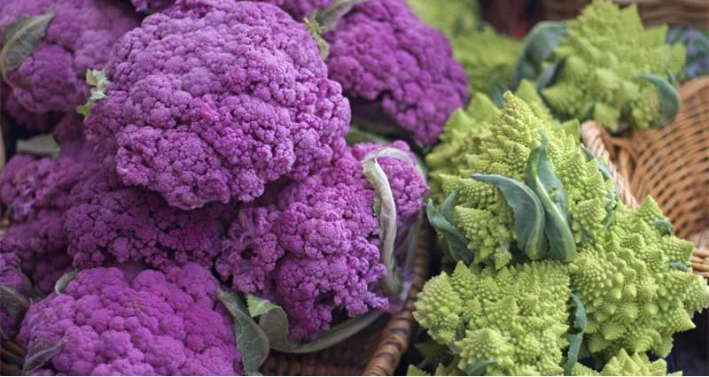 Cauliflower - from farm to fork