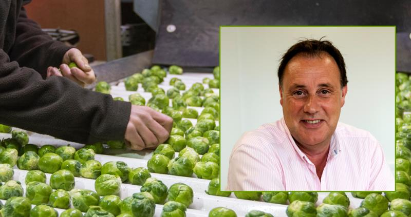 Martin Tate - sprouts_49469