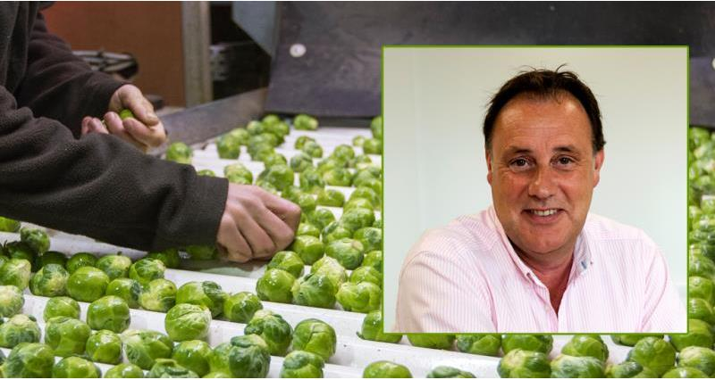Meet the Brussels sprouts grower