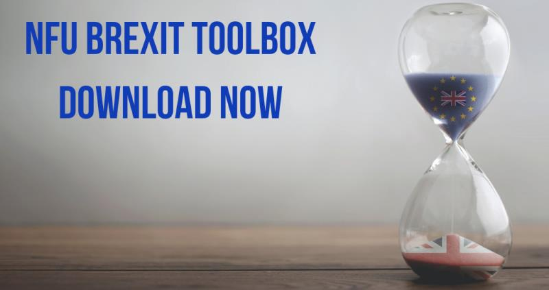 Brexit Toolbox_57946