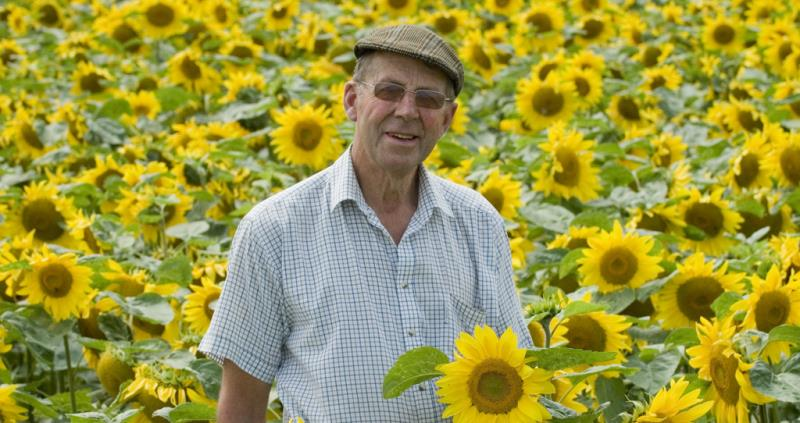 Nicholas Watts with sunflowers_51328