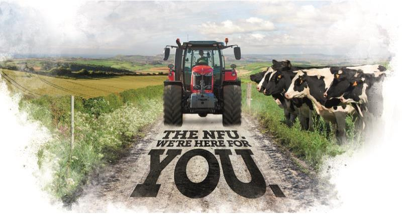 NFU18: Conference Programme