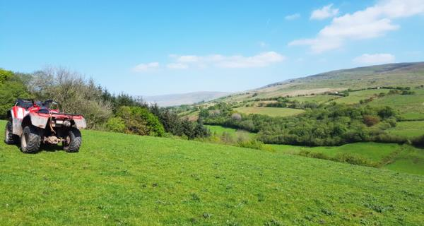 Welsh landscape_50770