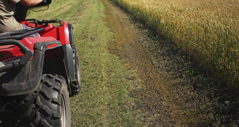 ATV on farm_12288