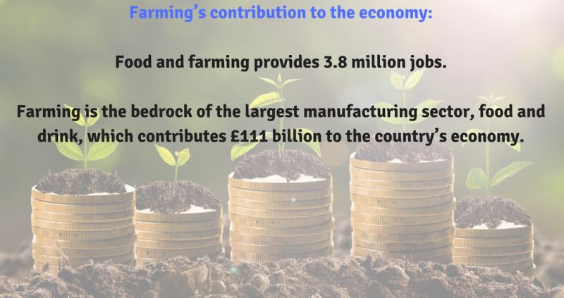 farming's contribution to the economy_57373