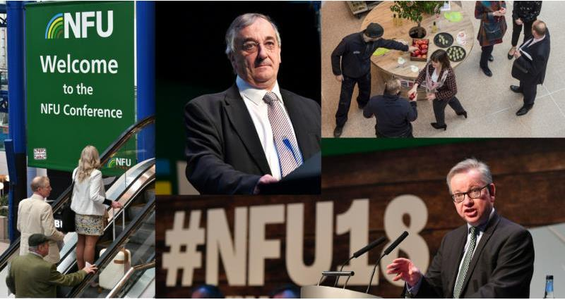 picture highlights day one NFU18_51342
