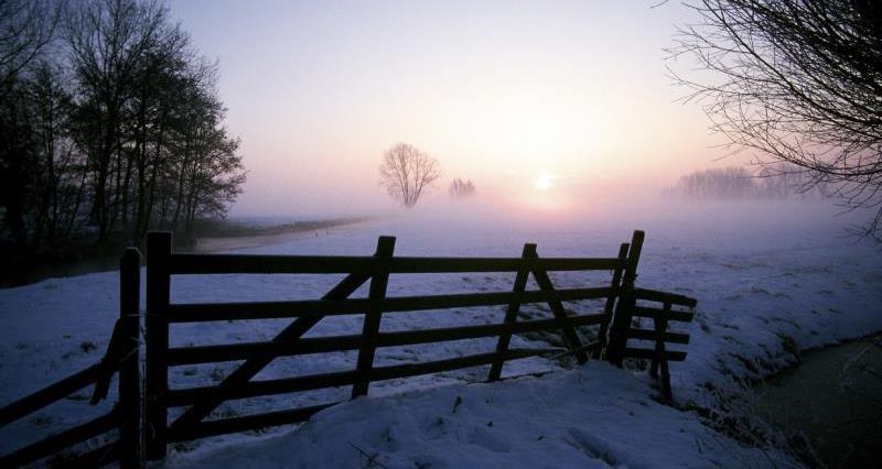 Winter sunset_19955