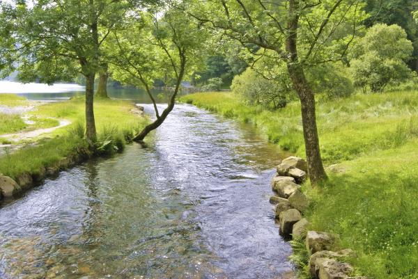 Buttermere river_7487
