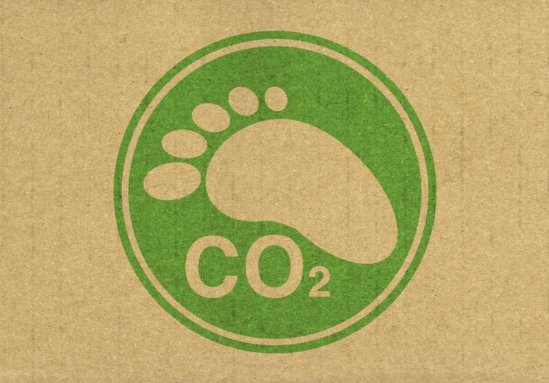 Carbon footprint_12643