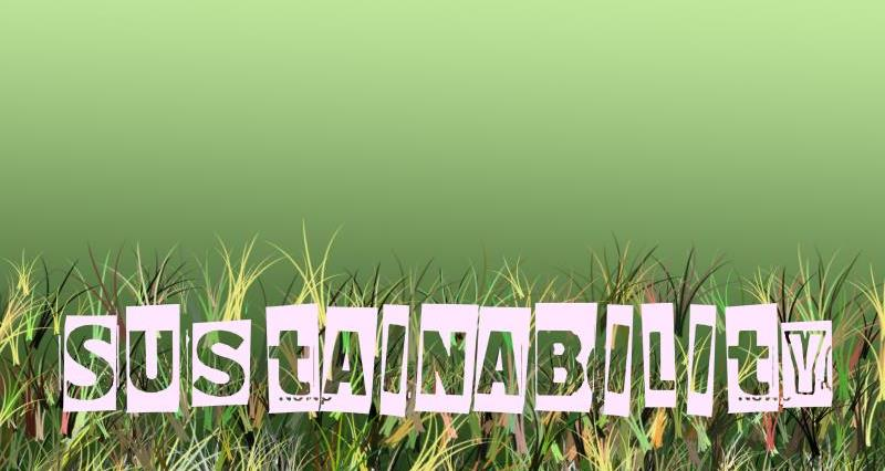 Blog: Sustainable Food and Beverage Conference