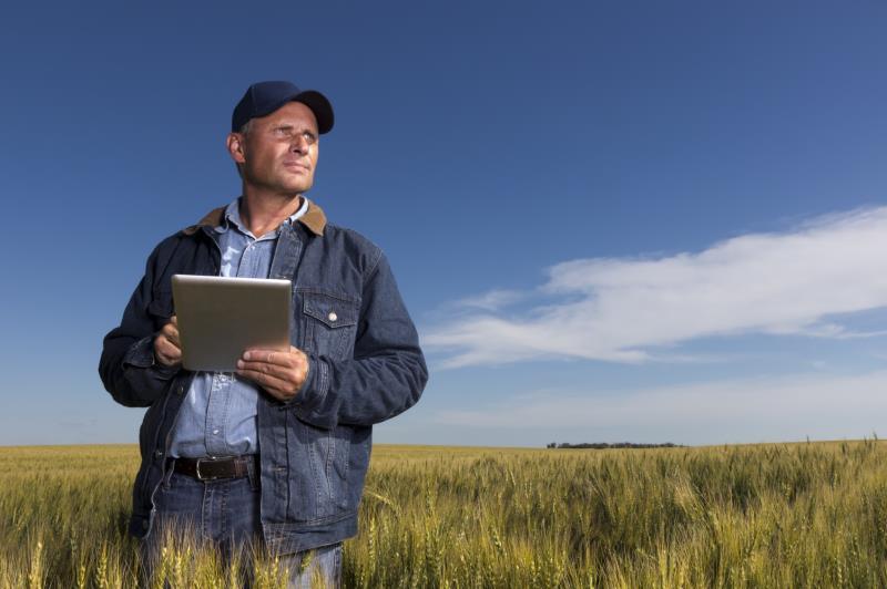 Farmer using tablet_16039