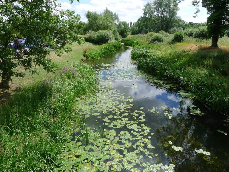 River Stour_45482