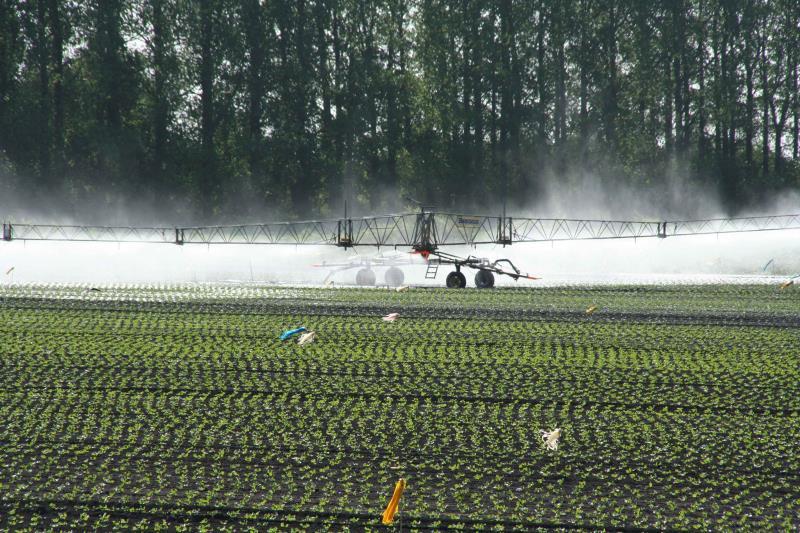 Boom irrigation_13617