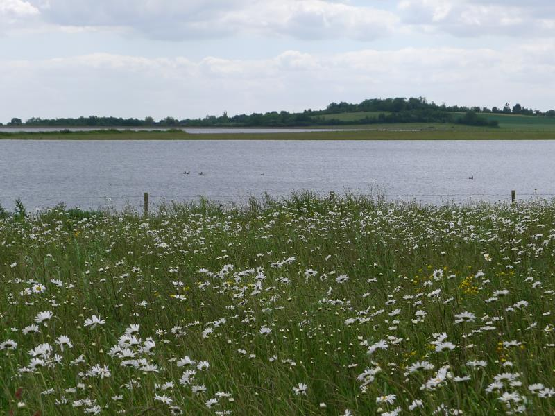 Abberton reservoir 2_28639