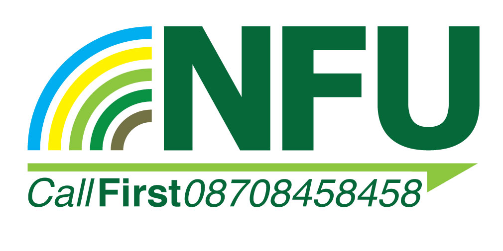 callfirst logo_18668