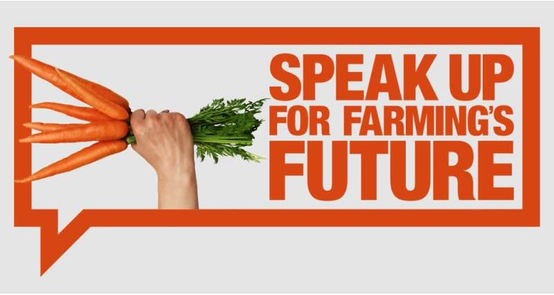 Speak up for farming's future (carrots)_52895