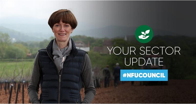 NFU Council: how we're working for growers