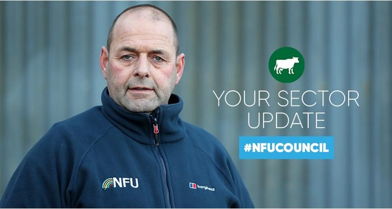 NFU Council: How we're working for dairy members