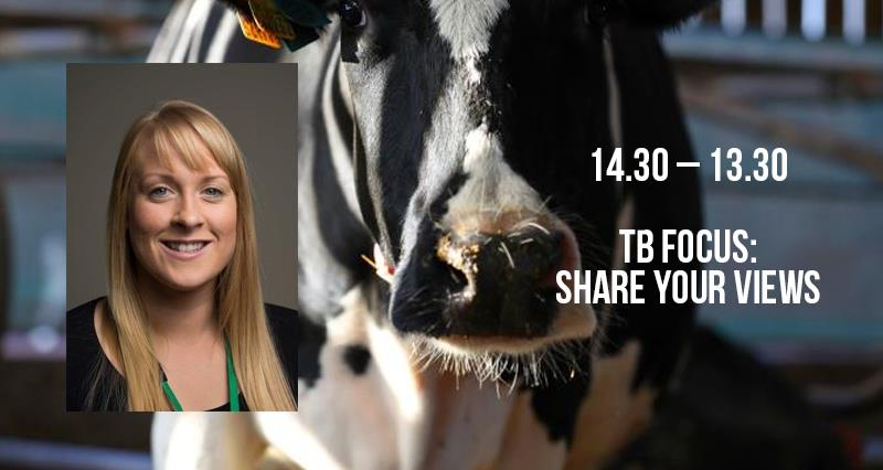 UK dairy day promo schedule TB_56978