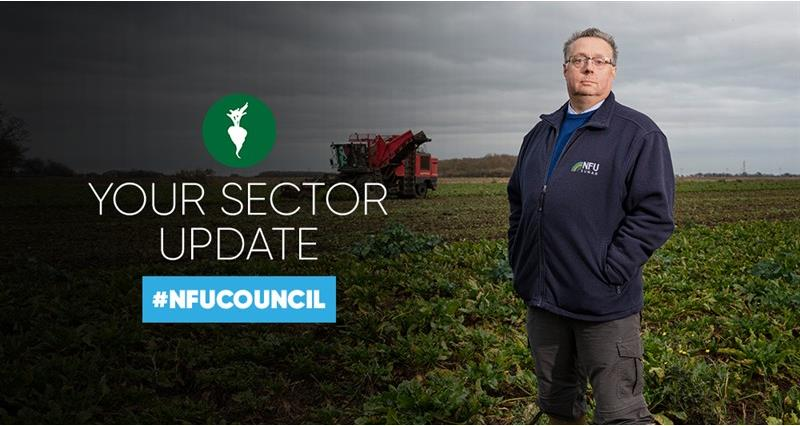 NFU Council: How NFU Sugar is working for growers
