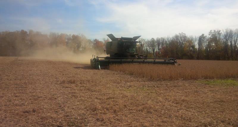 Soy harvest US_25537