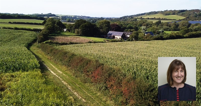 Why British farmers care about soil management