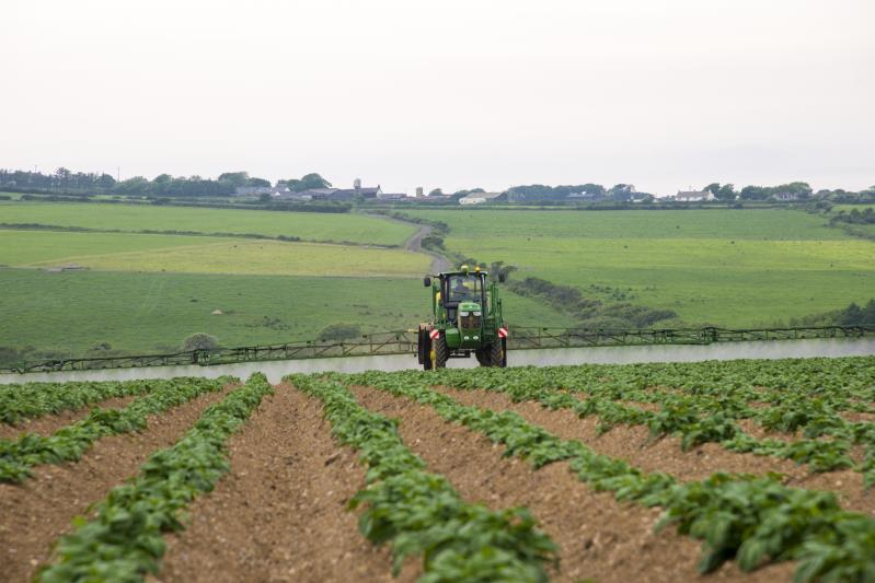 Sprayer, potato crop_35769