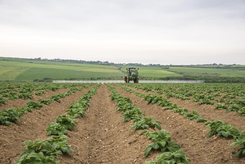 Sprayer, potato crop_35771