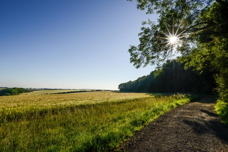 Farming landscape scene_47838