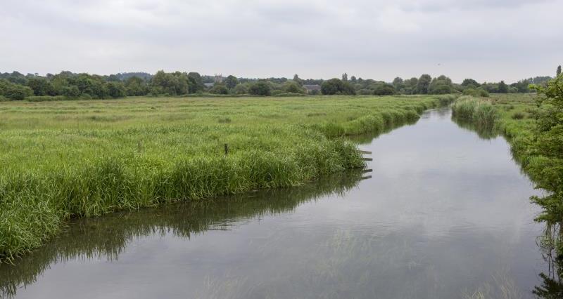 Watercourse Minette's farm_56394