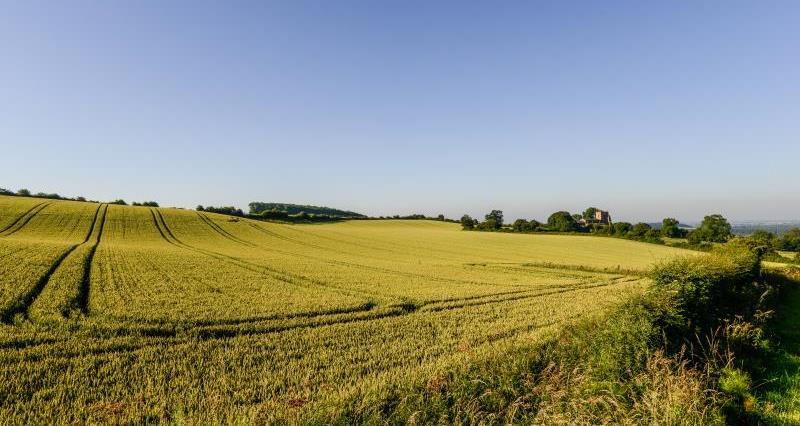 Farming landscape scene_47840