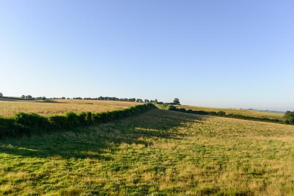 Farming landscape scene_47831