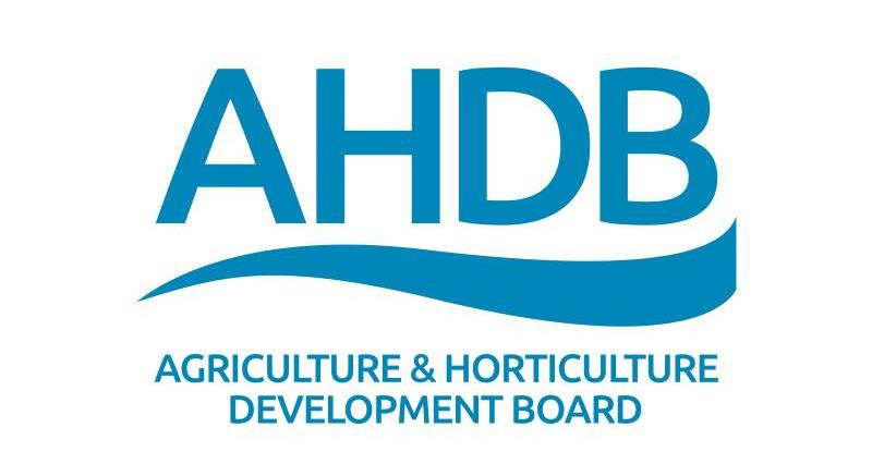 AHDB Group Logo colour_28652