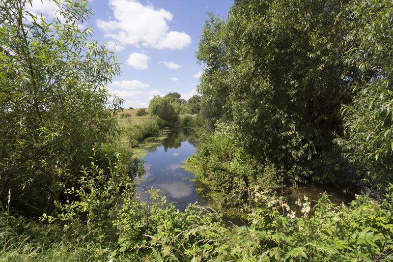 River Ouse_55628